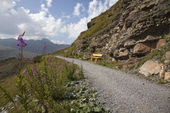 Hiking path on mountain in Switzerland Royalty Free Stock Photos