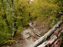 Hiking path in the mountains Stock Photography