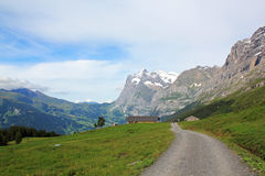 Hiking path in the mountains above Grindewald in Switzerland. Hiking, walking path in the mountains above the village Grindelwald, near Alpiglen, in Berner royalty free stock photography