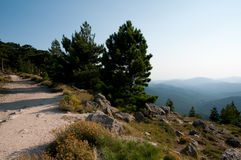 Hiking path in mountains of Corsica Stock Images