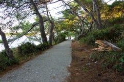 Hiking path Stock Photos