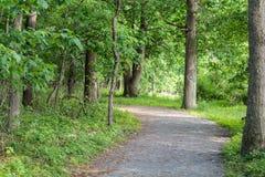 Hiking Path. A nice hiking path through the woods Stock Photos