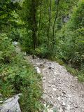 Hiking path stock photography