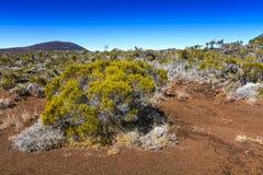 Hiking path, Piton de La Fournaise, Reunion Island. Hiking path, Piton de La Fournaise at Reunion Island Stock Images