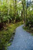 Hiking Path stock image