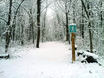 Hiking path in snow. Hiking and walking trail through the forest covered in snow Stock Images