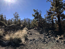 Hiking path in Teide National Park Royalty Free Stock Photos