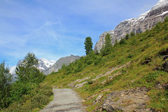 Hiking path to the village Grindelwald, near Alpiglen. Hiking path, near Alpiglen, from Kleine Scheidegg to the village Grindelwald. Mountain landscape in stock photography