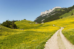 Hiking path in Wasserauen Royalty Free Stock Photos