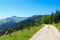 Hiking path way along the green meadow field and mountain Royalty Free Stock Image