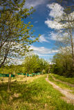 Hiking on pathway in beautiful colorful green forest with fruit trees Stock Images