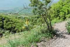 Hiking pathway- journey through roads, mystical nature. Mountain landscape- springtime mystical nature. Journey through roads and stone- hiking pathways stock photography