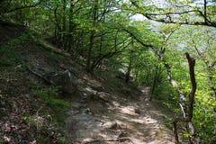 Hiking pathway- journey through roads, mystical nature. Mountain landscape- springtime mystical nature. Journey through roads and stone- hiking pathways stock photos