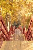 Hiking pathway wth wooden stairs in an autumn forest royalty free stock images