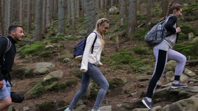 Hiking people. Hiker trio in the mountain. Two woman and man trekkers walking through forest path with backpack.  stock video footage