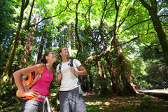 Hiking people in Redwoods nature, San Francisco Stock Images