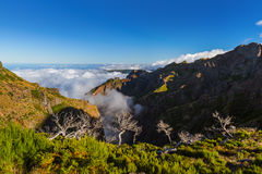 Hiking Pico Ruivo and Pico do Arierio - Madeira Portugal Royalty Free Stock Photo