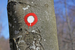 Hiking post pointing on tree Stock Photos