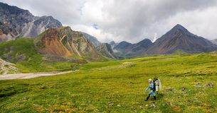 Hiking. She quickly goes on alpine tundra Royalty Free Stock Photo