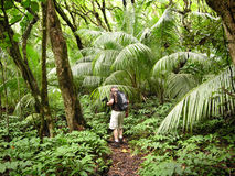 Hiking The Rain Forest. A photographer hiking through the beautiful Halawa Valley, Molokai, Hawaii stock images