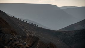 Hiking Ramon Crater stock photography
