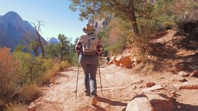 Hiking In Red Mountains Active Woman Walks Footpath In Zion Park Slow Motion 4K. Active women hiker with trekking poles, hat and to wearing backpack, in outdoor stock footage
