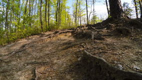 Hiking in Red River Gorge stock video footage