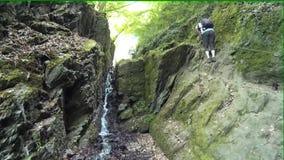 Hiking on the Rheinsteig stock footage