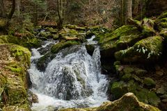 Hiking in the river ravenna canyon in the black forest in germany stock photo