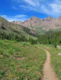Hiking in the Rocky Mountains, Colorado Royalty Free Stock Photography