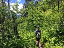 Hiking the rocky terrain of the Crypt Lake Trail, a steep ascent stock images