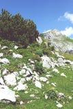 Hiking in Rofan mountain aeria in Tyrol (Austria). Retro retouch of image royalty free stock photo