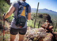 Hiking in Saguaro National Park. Woman Hiking in Saguaro National Park near Tucson, Arizona Royalty Free Stock Photos