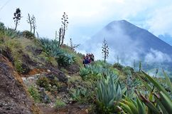 Hiking Santa Ana volcano Stock Images