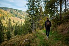 Hiking through the Schwarzwald in germany stock images