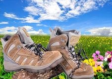 Hiking shoes  spring Stock Images