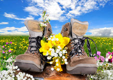 Hiking shoes  spring Royalty Free Stock Photography