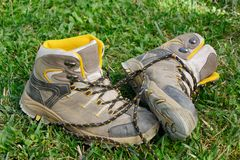Hiking shoes in the grass. Pair of hiking shoes in the grass Stock Photography