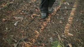 Hiking shoes on hikers walking forest. Female hike boots in closeup. stock video footage