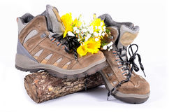 Hiking shoes spring Royalty Free Stock Image