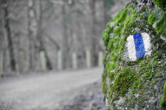 Hiking sign on a moss rock Stock Image