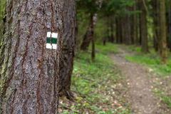 Hiking sign. Tourist hiking sign on tree showing road Stock Photo