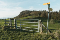 Hiking signpost in green field Stock Images