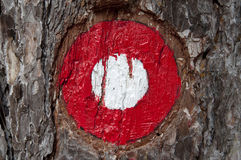 Hiking sing. Hiking sign, which is drawn on the tree Stock Images