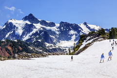 Hiking Snowfields Artist Point Glaciers Mount Shuksan Washington Royalty Free Stock Photography