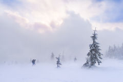 Hiking in the snowstorm. In the mountains Royalty Free Stock Photos