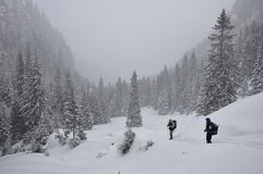 Hiking in snowstorm. Winter scene  on the mountain with tourists hiking in snowstorm in thick snow, Bucegi mountains , Malaesti Valley Royalty Free Stock Photography