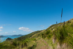 Hiking on South Molle Island, part of the Whitsunday Islands in Australia Stock Images