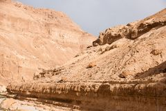 Hiking in stone desert of Israel Royalty Free Stock Image