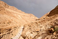 Hiking in stone desert middle east adventure Royalty Free Stock Photo